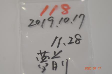 _dsc1515