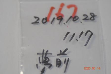 _dsc2160