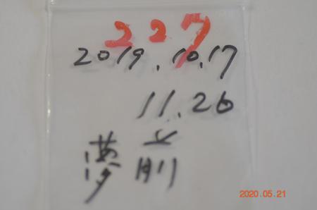 _dsc3134
