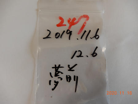 Dscn8943